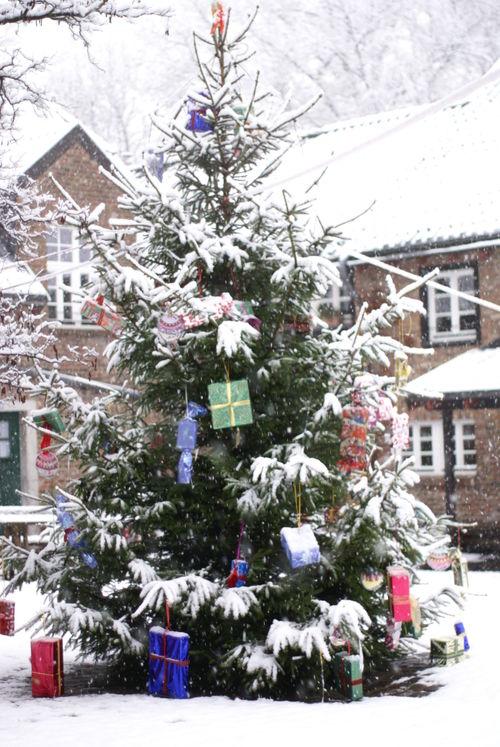 Schnee 019