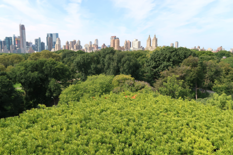 Blick auf die Upper West Side vom Rooftop Metropolitan Museum of Art New York